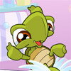 Jeu avec une tortue