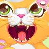 Soigner les dents d'un chat